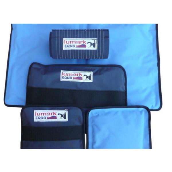 ساپورت گرمایشی و سرمایشی همراه با فشار لومارک
