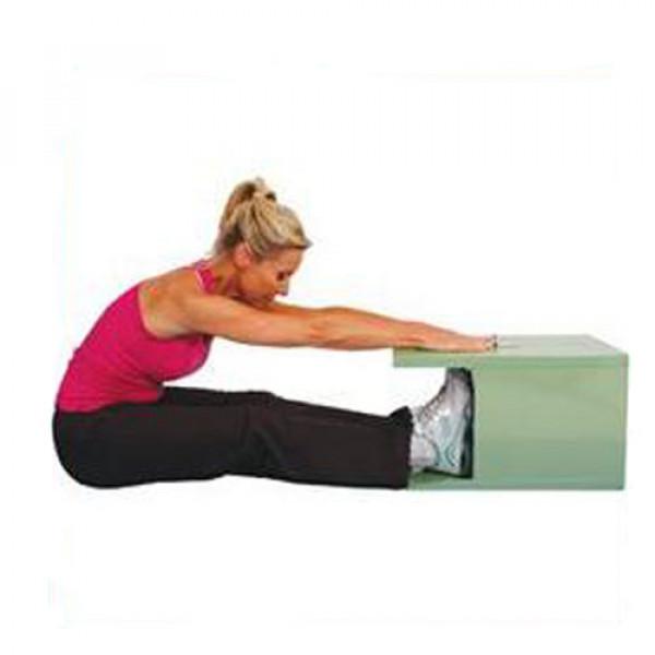 اندازگیری میزان انعطاف عضلات کمر و شکم Sit & Reach